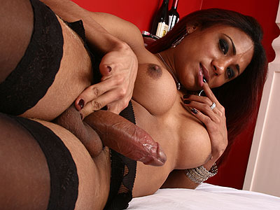 Transsexual Chasity Pretty Trannies